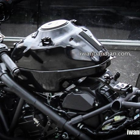 YZF_R25 naked (3)