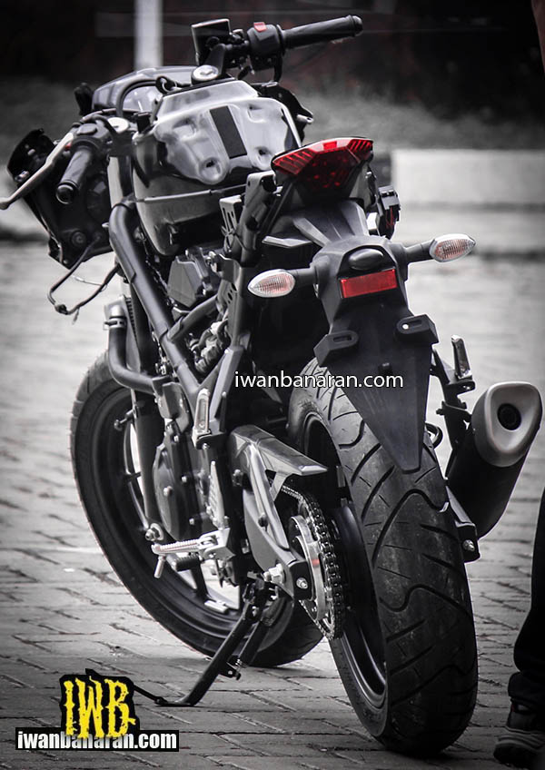YZF_R25 naked (5)
