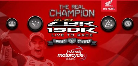 the real champion photo contest (1)