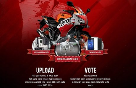 the real champion photo contest (2)