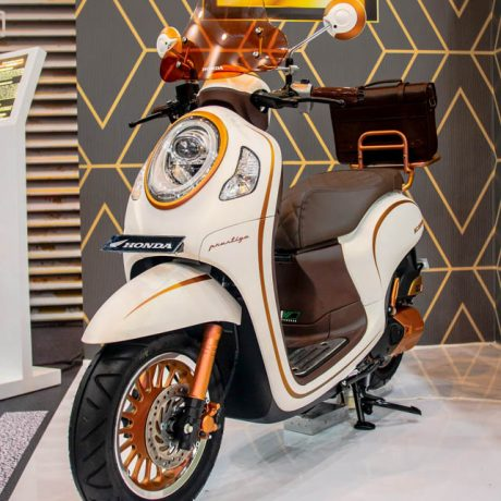 scoopy 2021 (35)