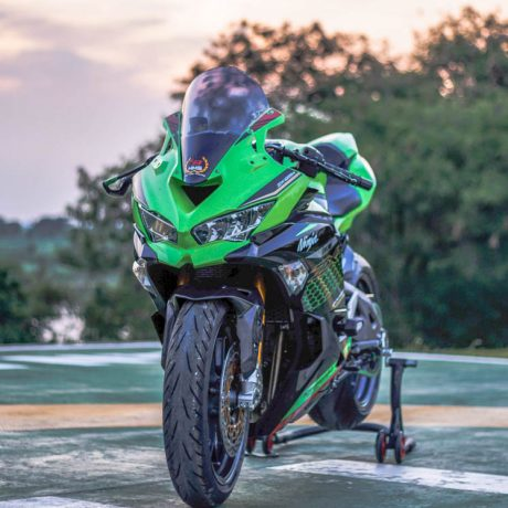 zx25r horse (1)