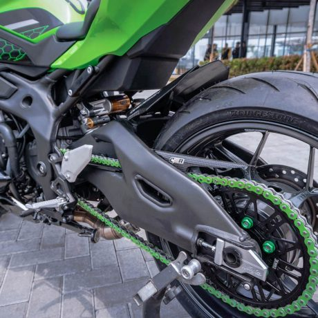 zx25r horse (11)