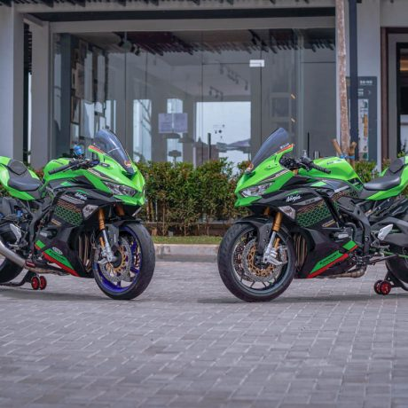 zx25r horse (2)