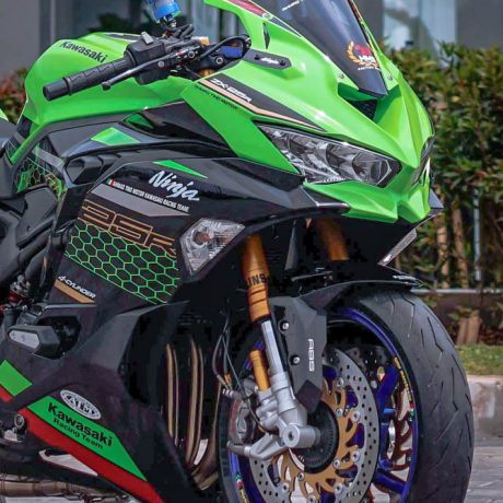zx25r horse (2)-5