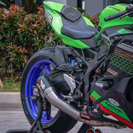 zx25r horse (2)-6