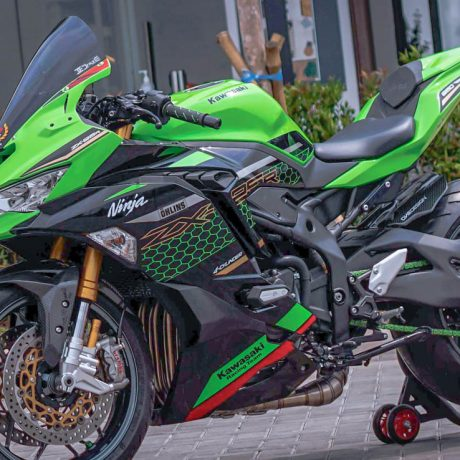 zx25r horse (2)-8