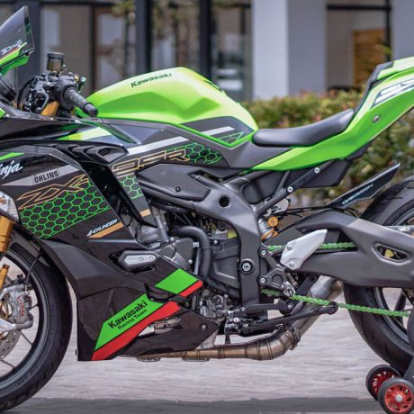 zx25r horse (4)-4