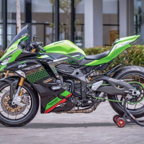 zx25r horse (4)