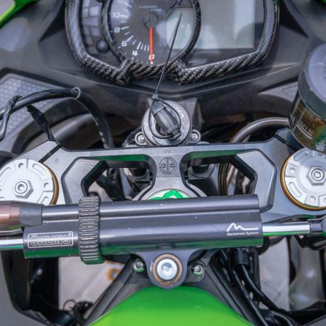 zx25r horse (6)