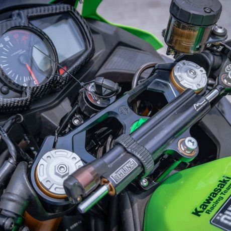 zx25r horse (8)